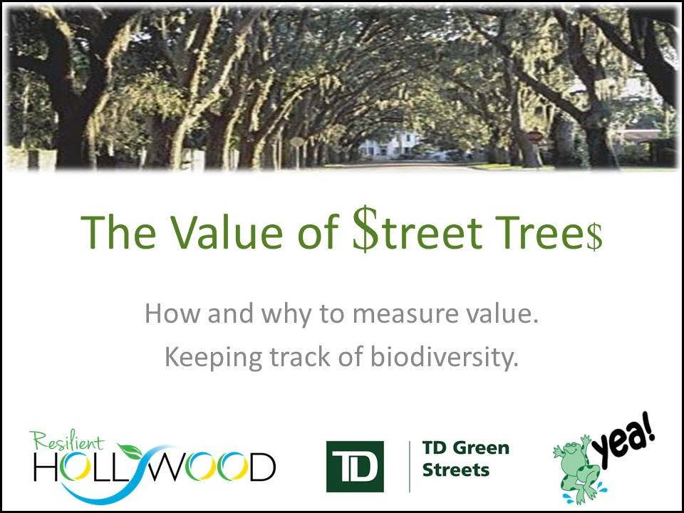 The Value of Street Trees