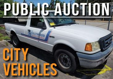 Online Surplus Auction of City Vehicles